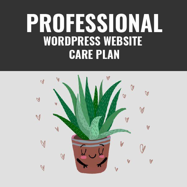 Professional Wordpress Website Care Plan